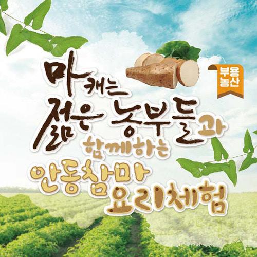 요리체험 (마피자&마나페/안동찜닭/우엉김밥&샌드위치/우엉청)