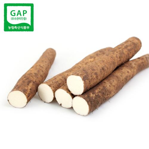 안동 GAP 햇장마 단중 5kg/10kg 안동마 GAP/장마/참마
